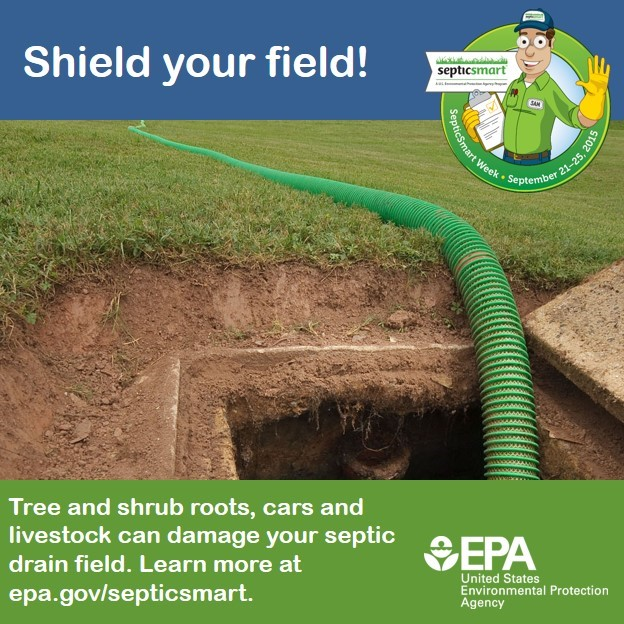 Many things can damage your septic drain field